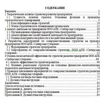 Разработка мероприятий по совершенствованию стратегии предприятия на примере ООО АПК «Сибирская губерния»