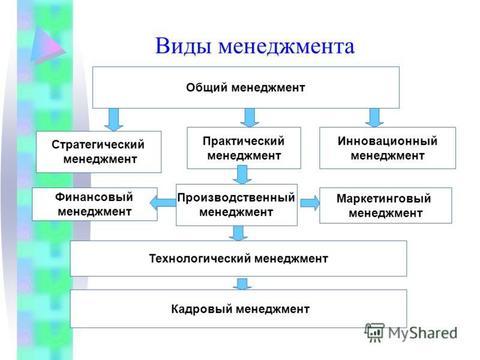 Виды менеджмента